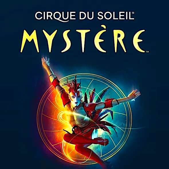 Mystere Show-Tickets